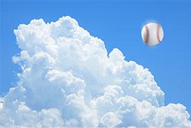 高校野球情報   阪神甲子園球場